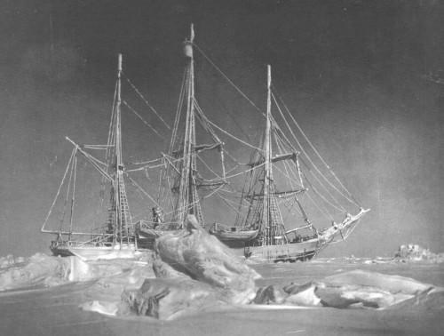 AntarcticBelgicaMoonlightWeb